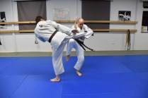 karate-middle-kick-counter