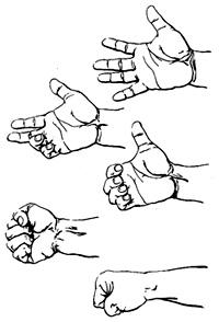Correct way to make a fist